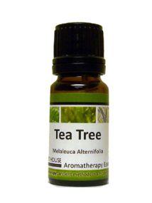 Tea Tree Aromatherapy Essential Oil