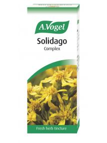 A.Vogel Solidago Complex Drops 50mls