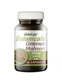 Lifeplan Cordyseps Mushroom 480mg 60 Capsules